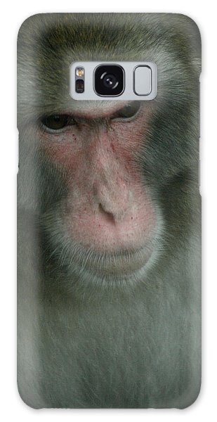Baboon Galaxy Case by Cindy Haggerty