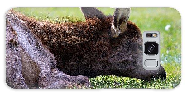Baby Elk Galaxy Case by Steve McKinzie