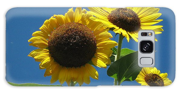 Back Bay Sunflowers Galaxy Case by Bruce Carpenter