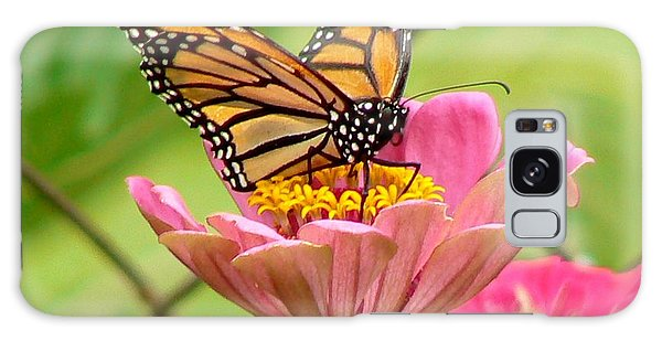 Back Yard Butterfly Galaxy Case