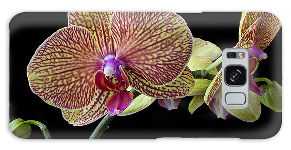Orchidaceae Galaxy Case - Baeutiful Orchids by Garry Gay