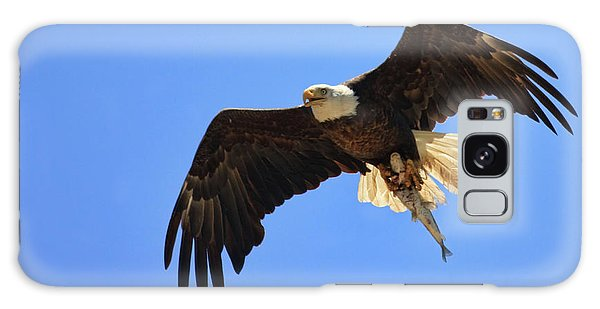 Bald Eagle Catch Galaxy Case