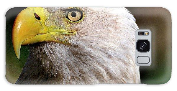 Bald Eagle Close Up Galaxy Case