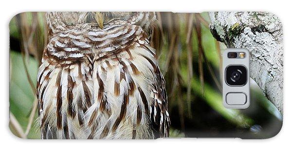 Barred Owl Galaxy Case