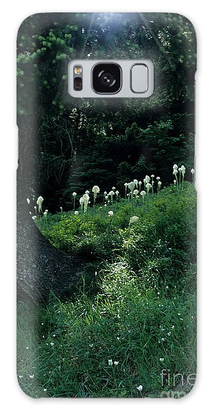 Bear-grass Ridge II Galaxy Case by Sharon Elliott