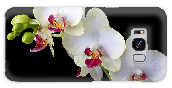 Orchidaceae Galaxy Case - Beautiful White Orchids by Garry Gay