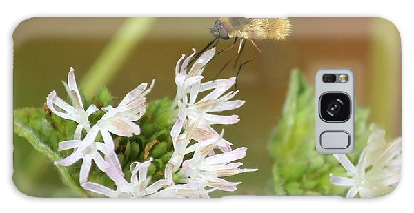 Bee Fly Don't Bother Me Galaxy Case