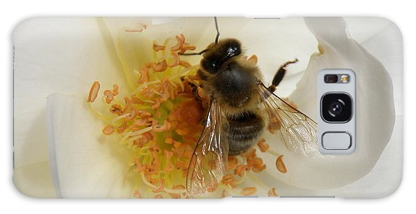 Bee In A White Rose Galaxy Case by Lainie Wrightson