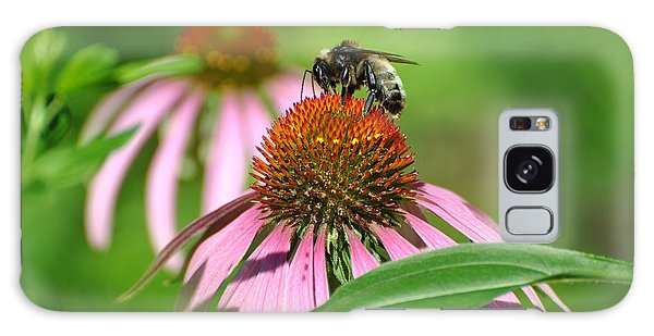 Bee On Pink Flower Galaxy Case