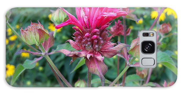 Beebalm Flower Galaxy Case