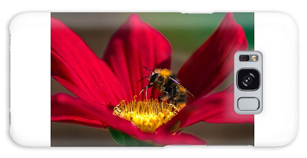 Galaxy Case featuring the photograph Beebot by Stwayne Keubrick