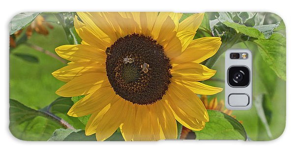 Bees And The Sun Galaxy Case