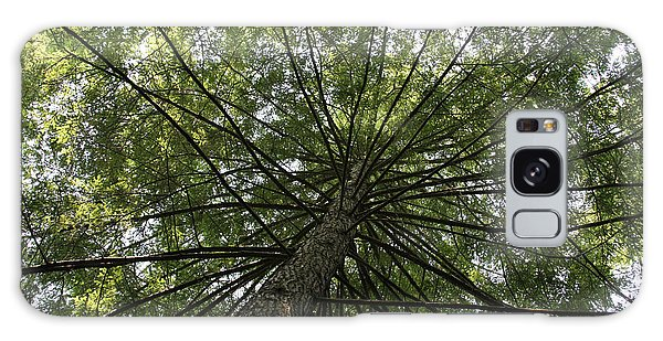 Beneath Tree Galaxy Case