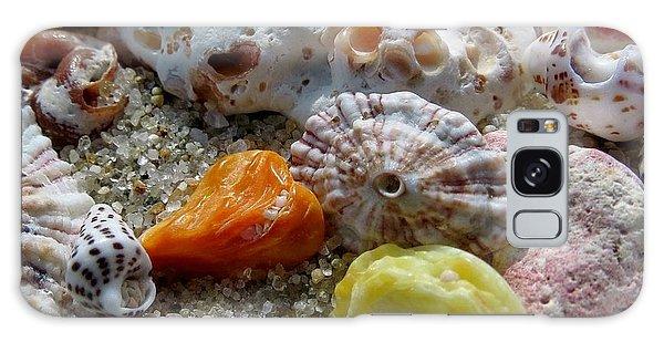 Bermuda Beach Shells Galaxy Case
