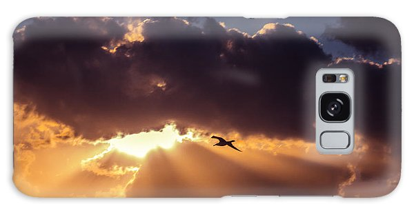 Bird In Sunrise Rays Galaxy Case