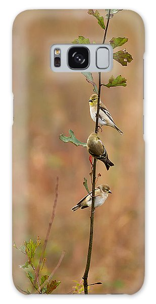 Bird Stack Galaxy Case