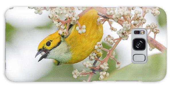 Bird With Berry Galaxy Case