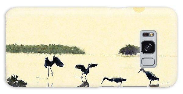 birds feeding in the Everglades Galaxy Case