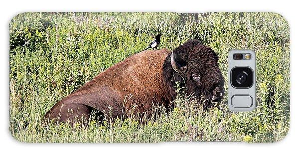 Bison And Bird Galaxy Case