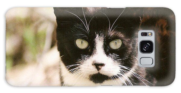 Black And White Feral Cat Galaxy Case