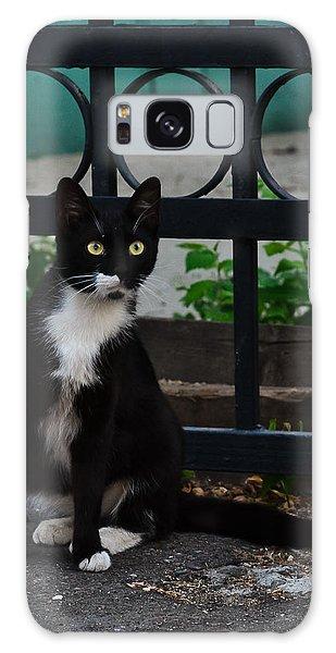 Black Cat On Black Background Galaxy Case