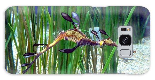 Black Dragon Seahorse Galaxy Case by Carla Parris