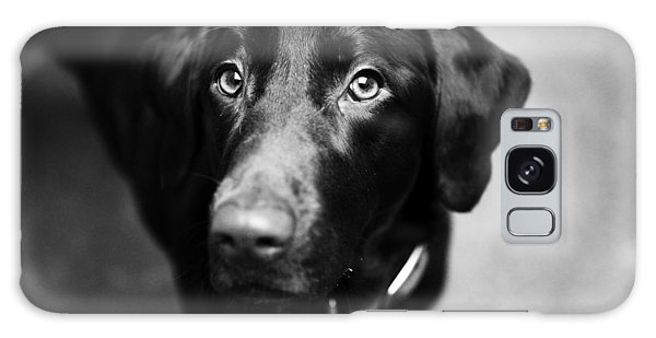 Black Labrador  Galaxy Case
