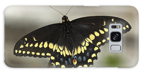 Black Swallowtail Din103 Galaxy Case by Gerry Gantt