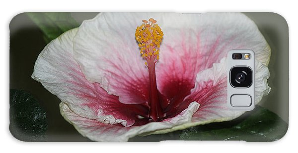 Blood Red Hibiscus  Galaxy Case