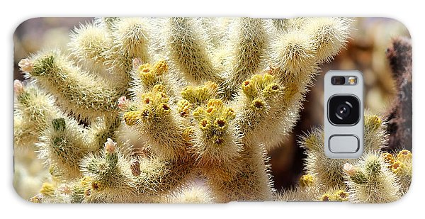 Blooming Cholla Galaxy Case