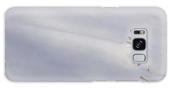 Blown Snow And Oak Leaf Galaxy Case