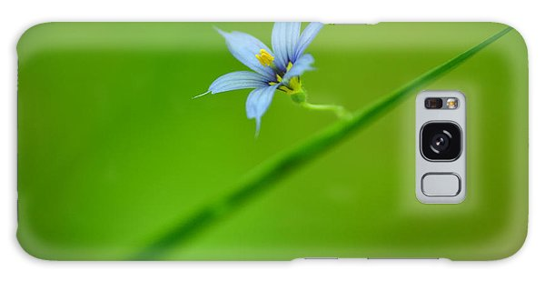 Blue-eyed Grass Galaxy Case by JD Grimes