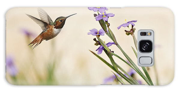 Blue-eyed Grass Wildflowers And Rufous Hummingbird Galaxy Case