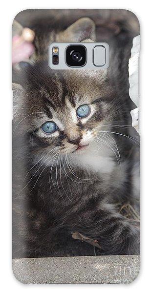 Blue Eyes Galaxy Case