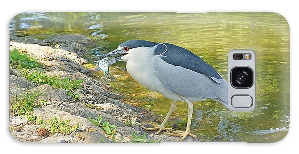 Blue Heron With Fish Galaxy Case by J Jaiam