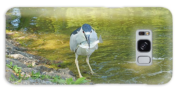 Blue Heron With Fish One Galaxy Case by J Jaiam