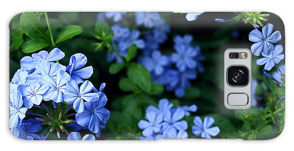 Blue Plumbago Galaxy Case