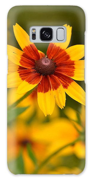 Blush-eyed Susan Galaxy Case by JD Grimes