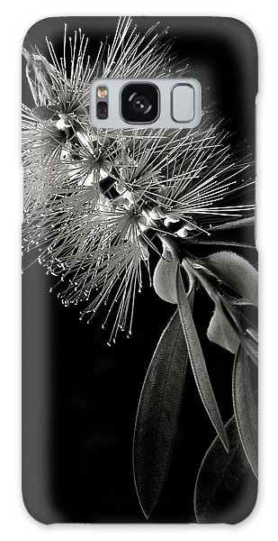 Bottlebrush In Black And White Galaxy Case