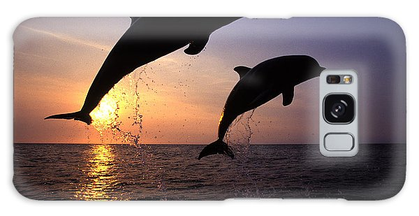 Bottlenose Dolphins Galaxy S8 Case