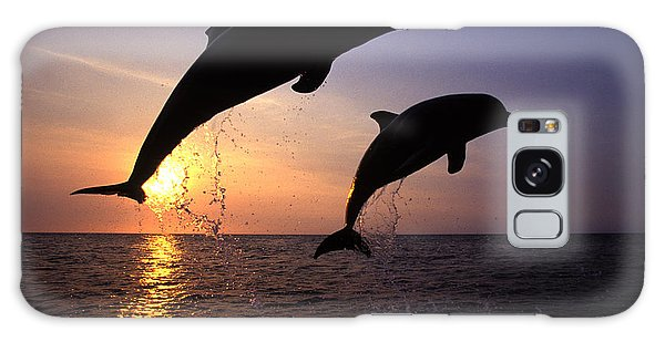 Dolphin Galaxy Case - Bottlenose Dolphins by Francois Gohier and Photo Researchers