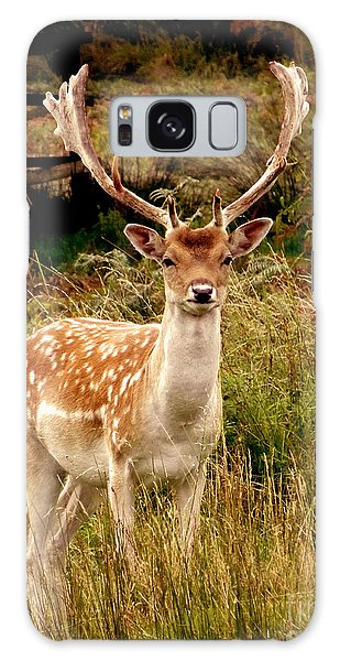 Wildlife Fallow Deer Stag Galaxy Case by Linsey Williams
