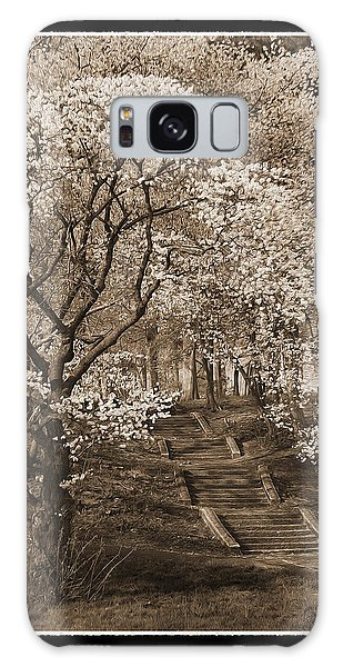 Branchbrook Park In Sepia Galaxy Case