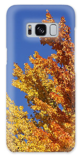 Brilliant Fall Color And Deep Blue Sky Galaxy Case by Mick Anderson