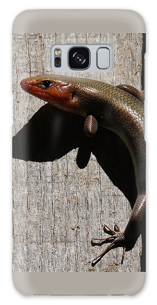 Broad-headed Skink On Barn  Galaxy Case