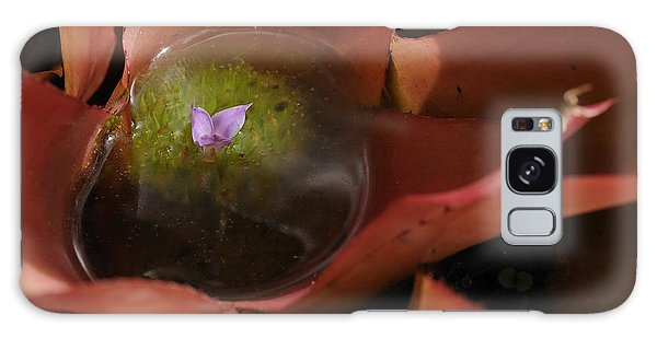 Bromeliad - The Garden Has Secrets Galaxy Case