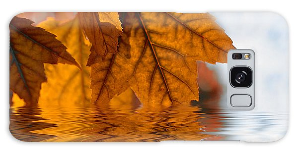 Bronze Reflections In Autumn Galaxy Case by Elaine Manley