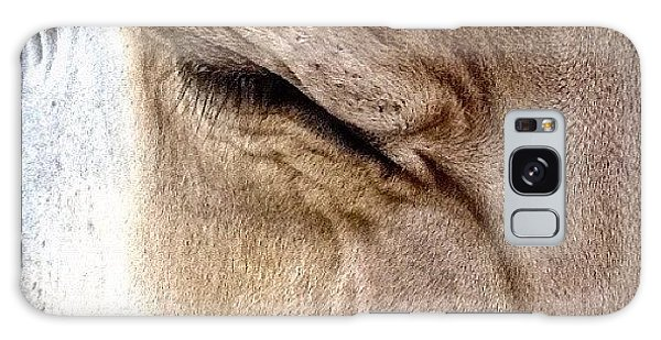 Ohio Galaxy Case - Brown Swiss Cow by Natasha Marco