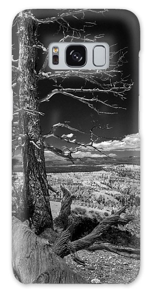 Bryce Canyon - Dead Tree Black And White Galaxy Case
