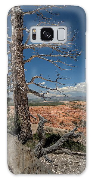 Bryce Canyon - Dead Tree Galaxy Case